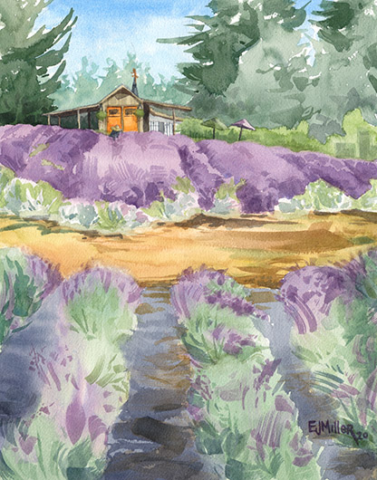 Lavender Breeze, Countryside -  artwork by Emily Miller