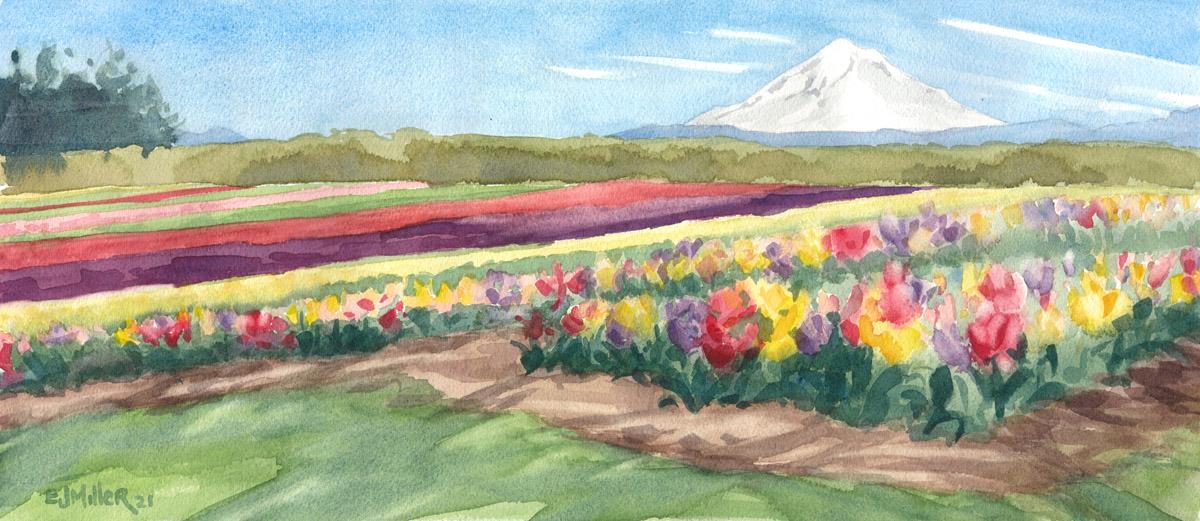 Tulip Rainbows