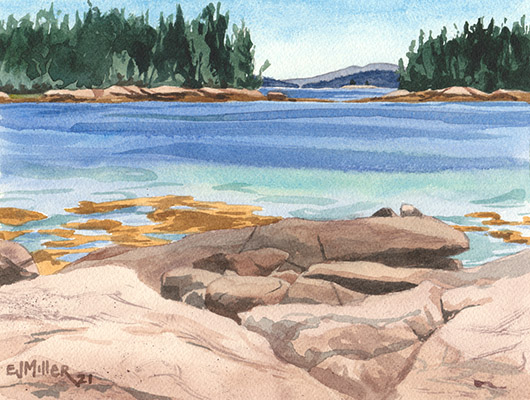 Canoe Launch at Sunshine Road, Down East Maine -  artwork by Emily Miller